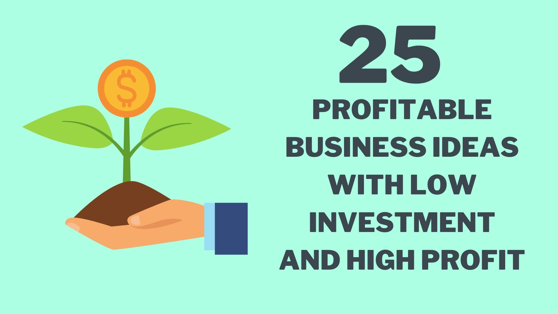 Read more about the article 25 Profitable Business Ideas with Low Investment And High Profit